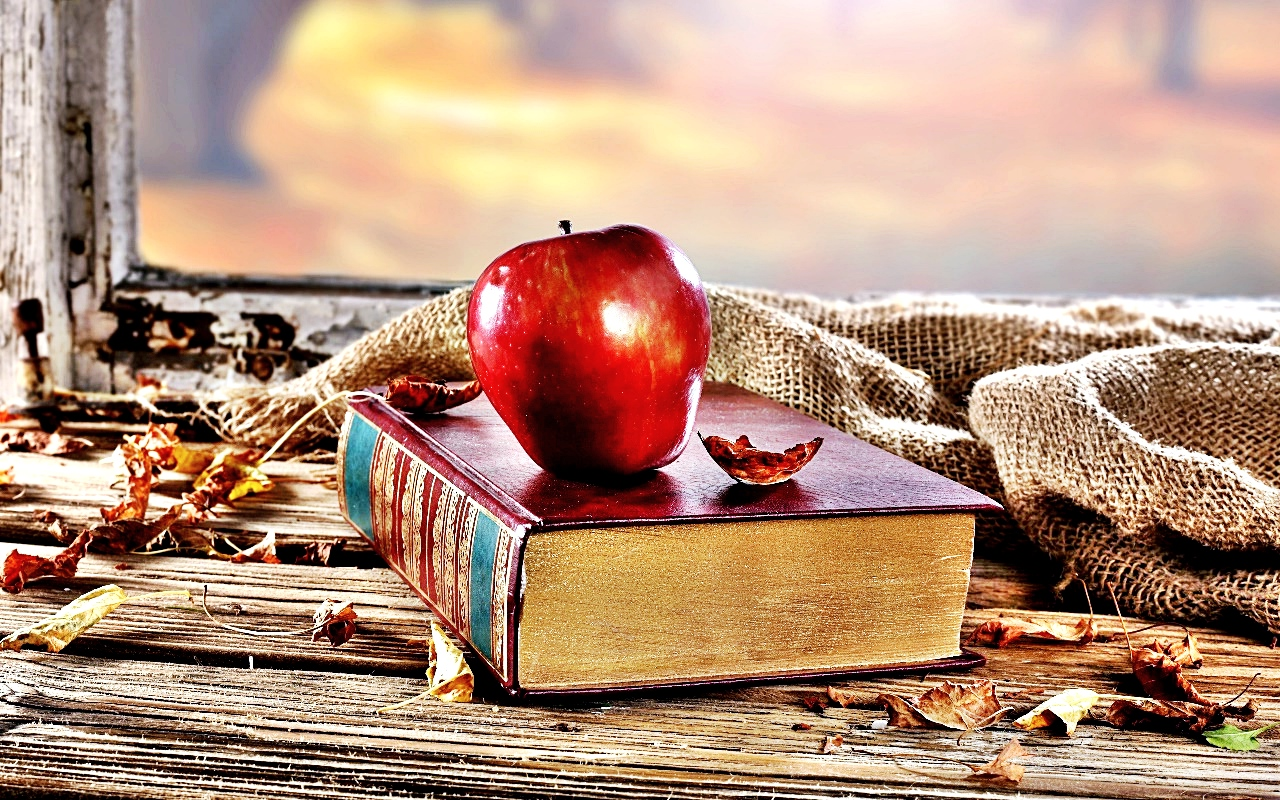kitaplardan-sozler