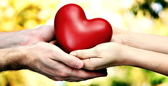 Red heart in woman and man hands, on green background
