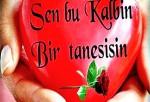 Sevgiliye En Güzel Aşk Mesajları